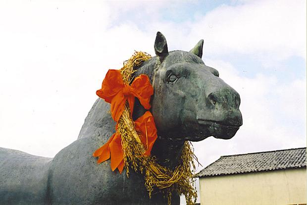 Cheval / Marc'h / Horse Callac-25072004-naous1