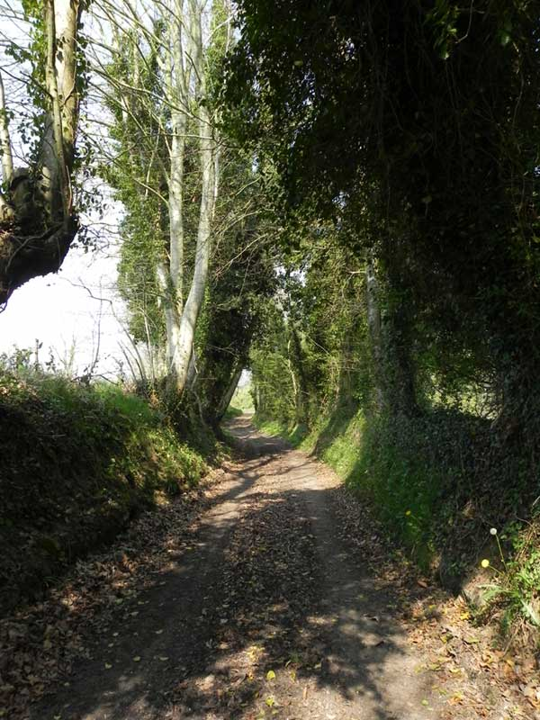 Termes et code de la route - Page 2 St-lavan-chemin298