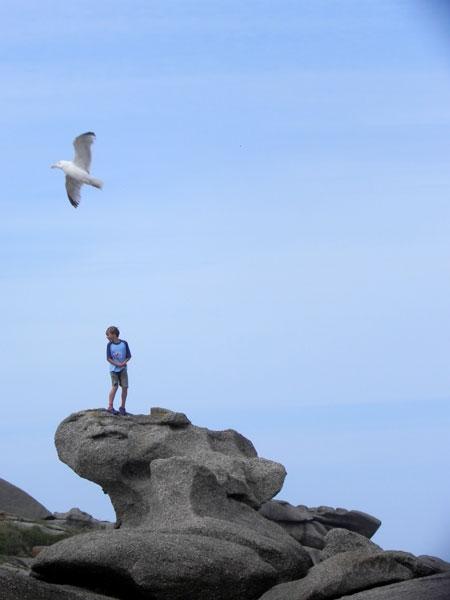 L'enfant et les oiseaux / Ar bugel hag an evned Enfant-goeland
