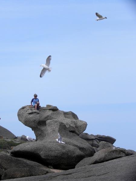 L'enfant et les oiseaux / Ar bugel hag an evned Enfant-goeland2